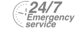 24/7 Emergency Service Pest Control in Barking, Creekmouth, IG11. Call Now! 020 8166 9746