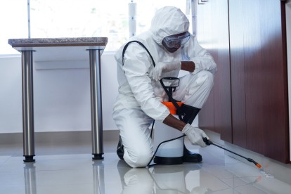 Emergency Pest Control, Pest Control in Barking, Creekmouth, IG11. Call Now 020 8166 9746